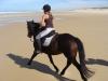 galoper sur la plage à cheval