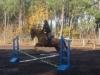 cours saut d'obstacles  centre equestre